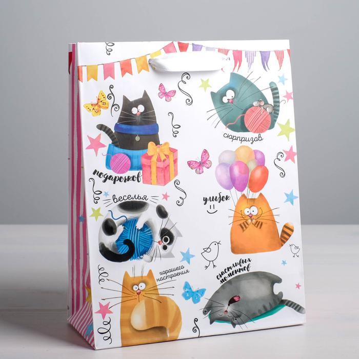 Пакет «Забавные коты», ML 23 × 27 × 8 см 55969