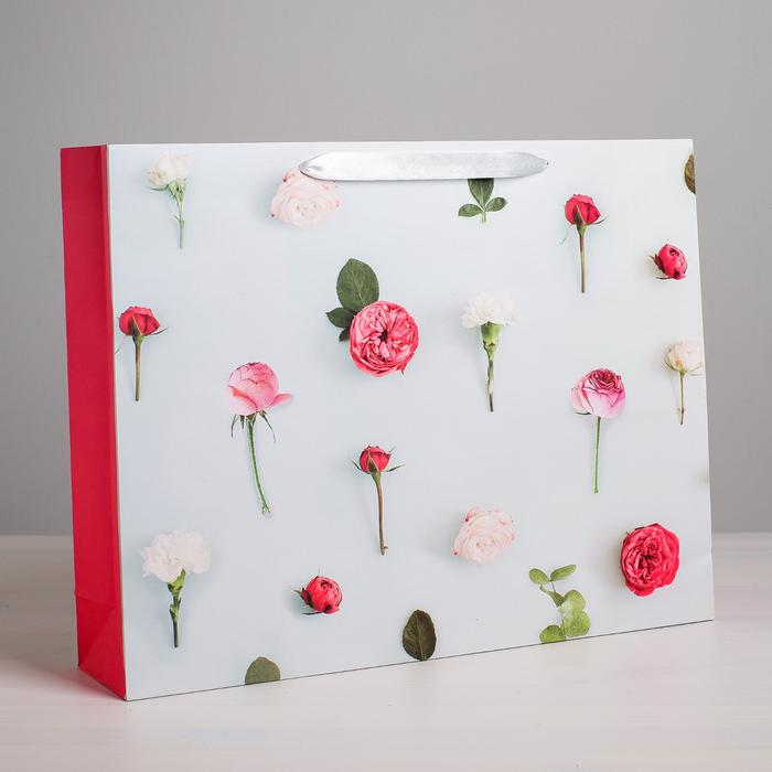 Пакет «Ты прекрасна», ML 23 × 27 × 8 см 55979
