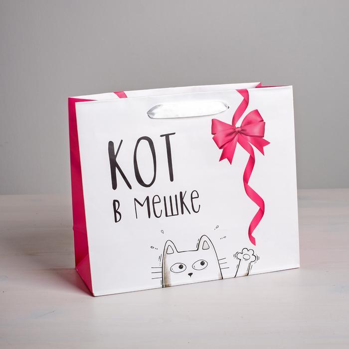 Пакет «Кот в мешке», ML 23 × 27 × 11,5 см 57131