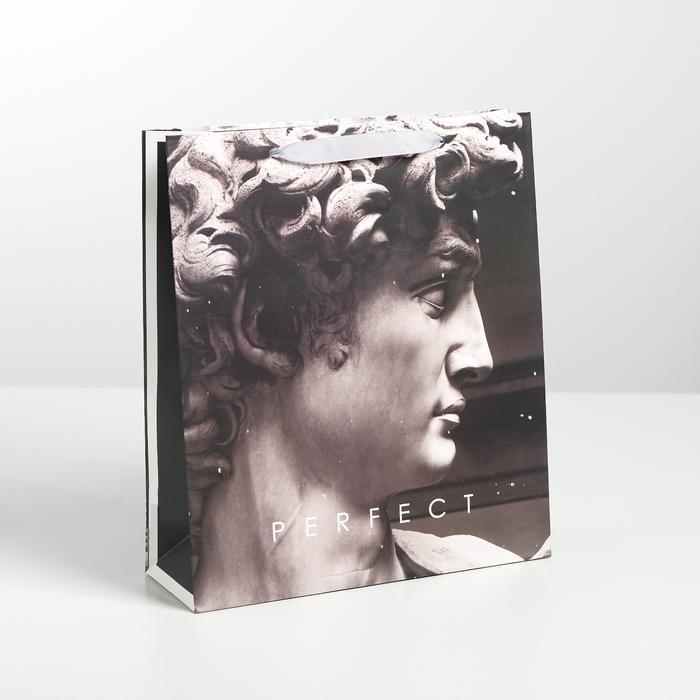 Пакет Perfect, M 26 × 30 × 9 см 57114