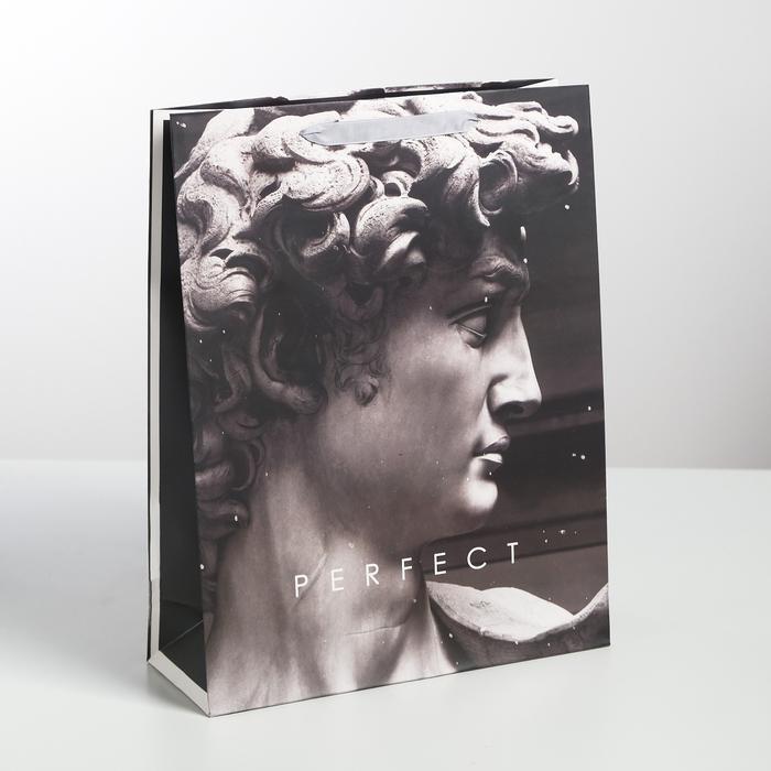 Пакет Perfect, L 31 × 40 × 11,5 см 57113