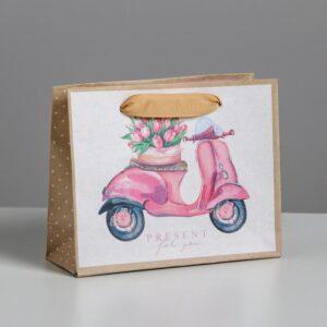Пакет Present for you, 15 х 12 х 5,5 см 55101