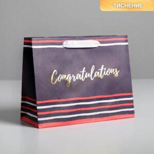 Пакет крафтовый Congratulations, MS 23 × 18 × 10 см 57068
