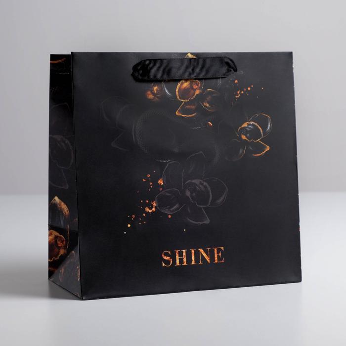 Пакет Shine, 22 × 22 × 11 см 57147