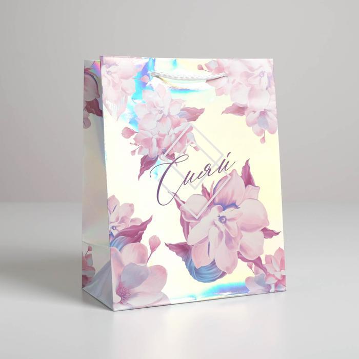 Пакет «Сияй», 18 × 23 × 10 см 56055