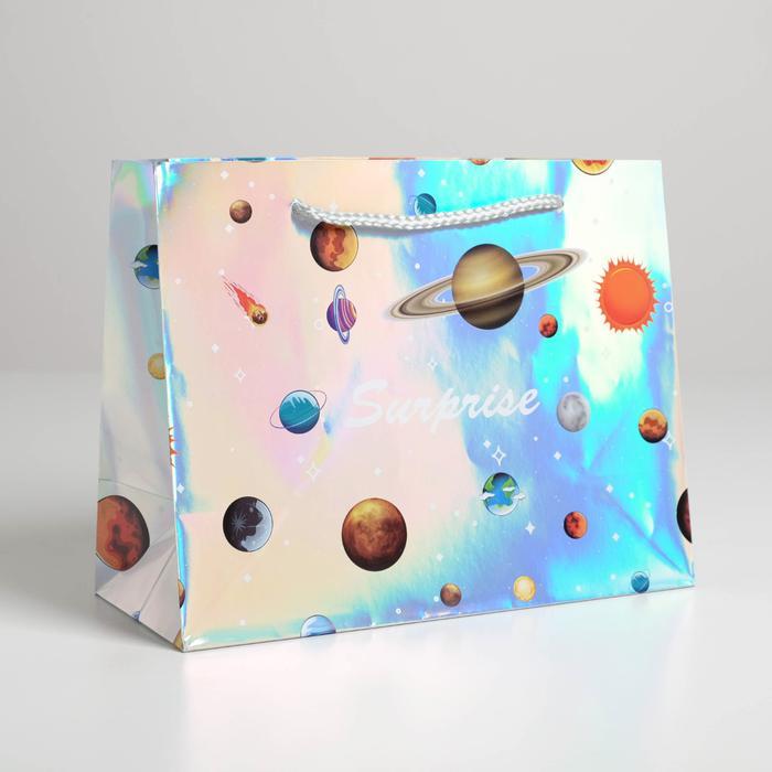 Пакет подарочный Surprise, 23 × 18 × 10 см 57059