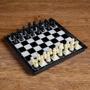 Шахматы 19х19 см 54875