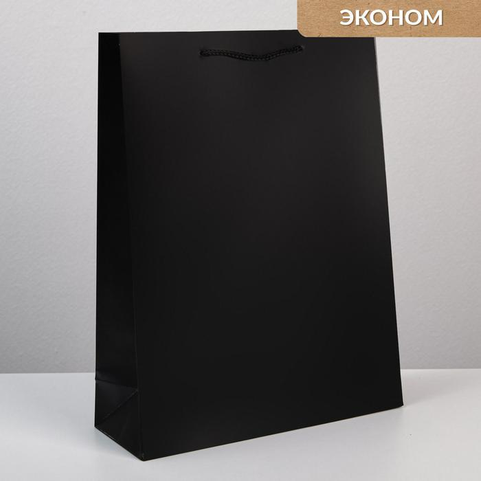 Пакет «Чёрный», L 31 х 40 х 11,5 см 57079